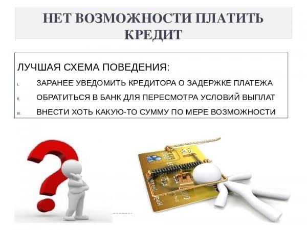 Заемщик не платит кредит. Что делать поручителю?